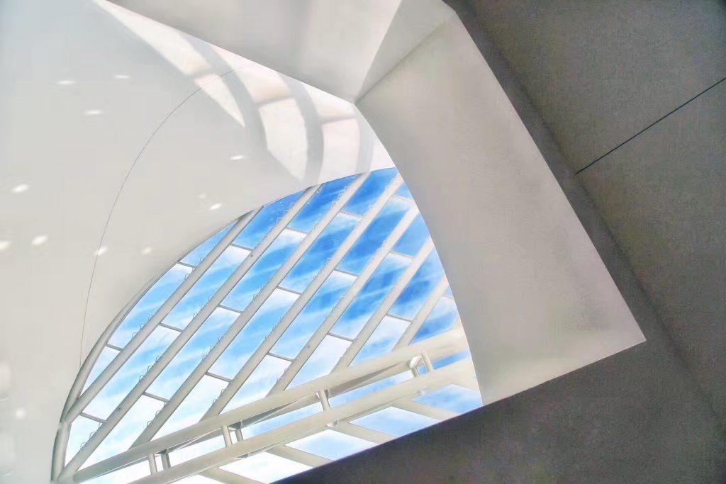 MOMA (3)