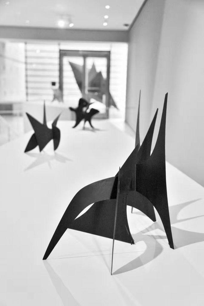 MOMA (8)