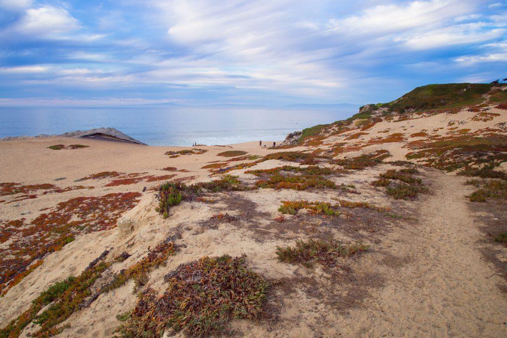 Monterey (1)