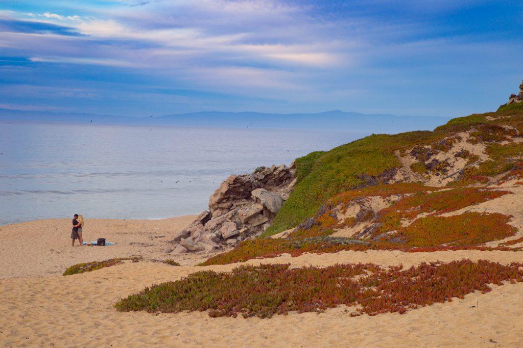 Monterey (2)