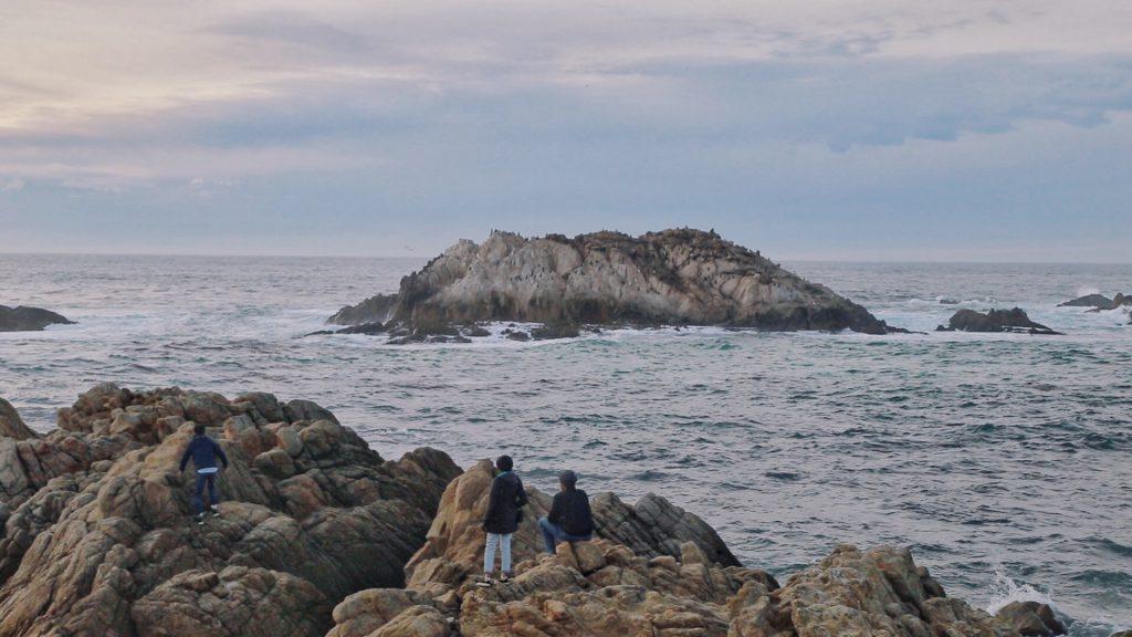 Monterey 7 1