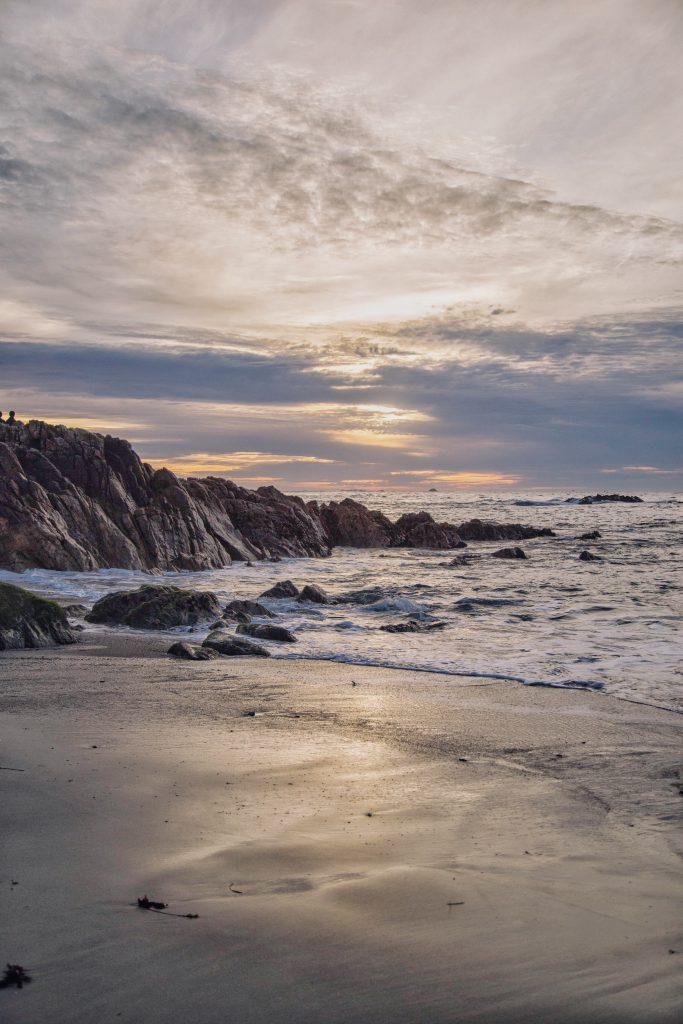 Monterey (8)